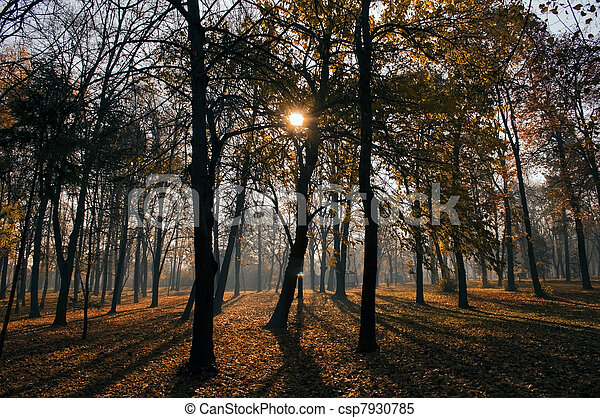 automne - csp7930785
