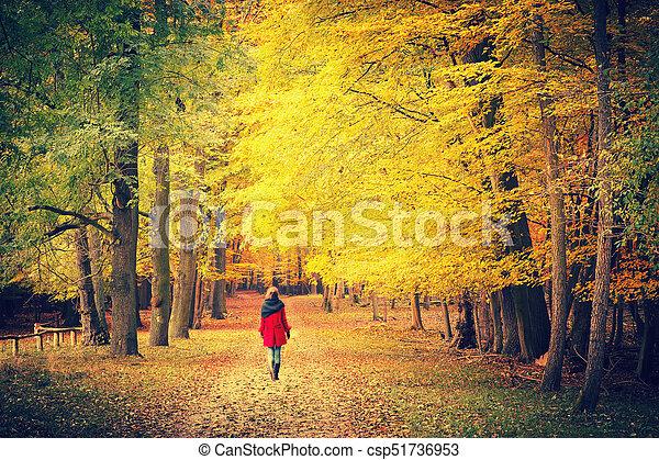 automne, parc, chemin - csp51736953