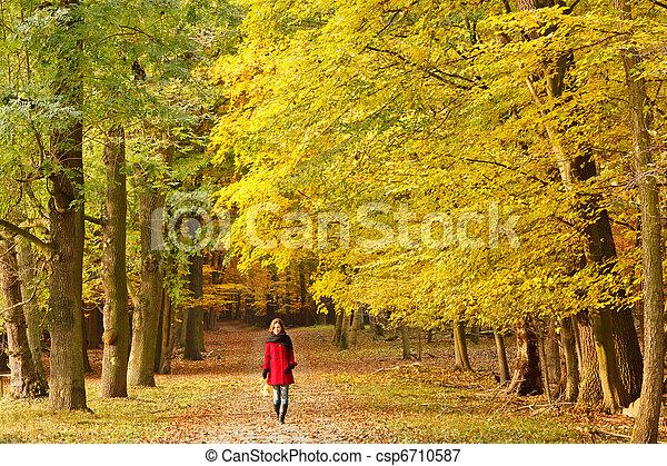 automne, parc - csp6710587