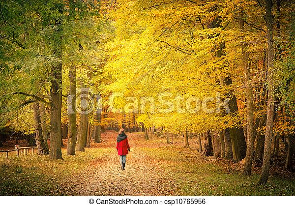 automne, parc - csp10765956