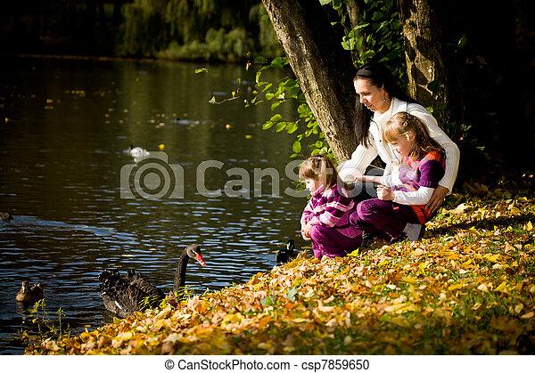 automne, parc, jeune famille - csp7859650