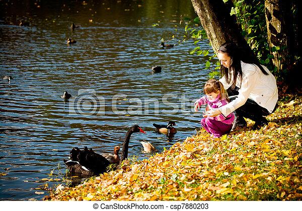 automne, parc, jeune famille - csp7880203