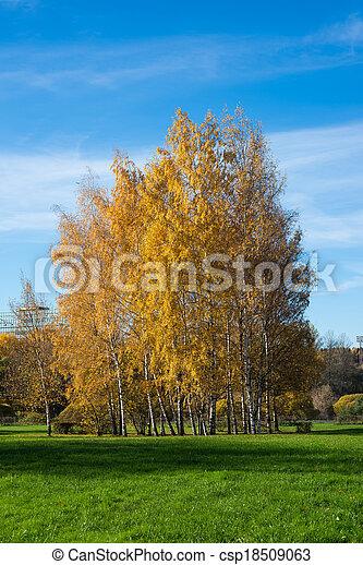 automne, parc, jour ensoleillé - csp18509063