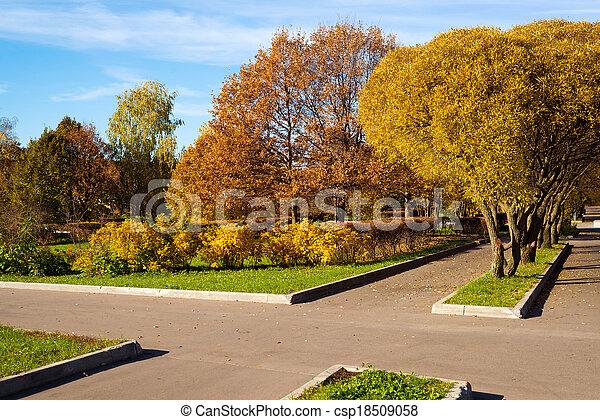 automne, parc, jour ensoleillé - csp18509058