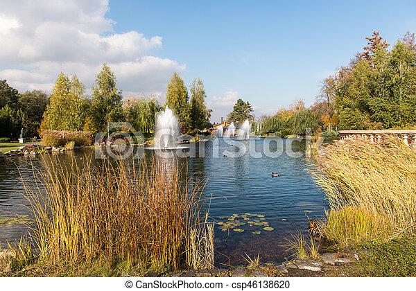automne, parc, jour ensoleillé - csp46138620