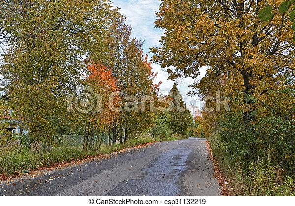 automne, parc, tôt, jour ensoleillé - csp31132219