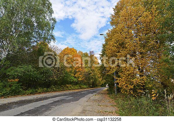 automne, parc, tôt, jour ensoleillé - csp31132258