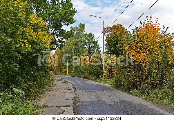automne, parc, tôt, jour ensoleillé - csp31132224