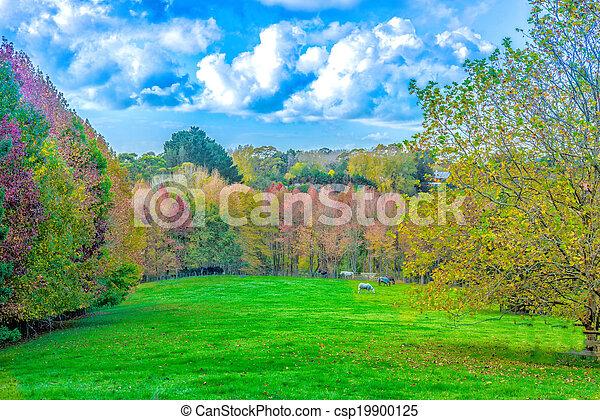automne - csp19900125