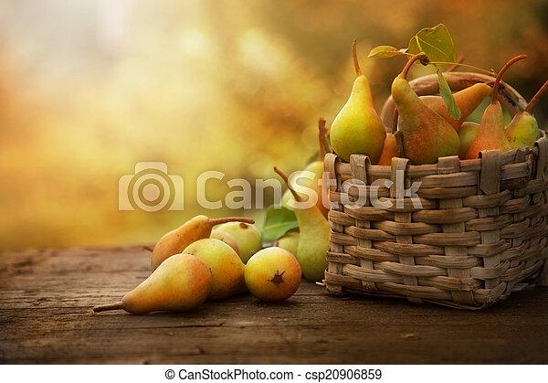 automne, poires - csp20906859