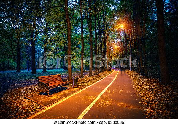 automne, poussière, parc, chemin - csp70388086