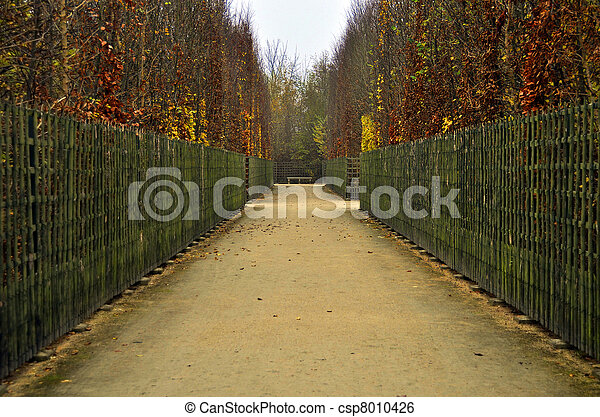 automne, sentier - csp8010426