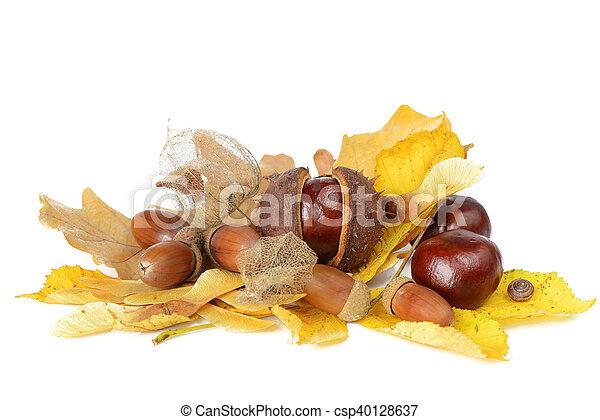 automne, vie, encore - csp40128637