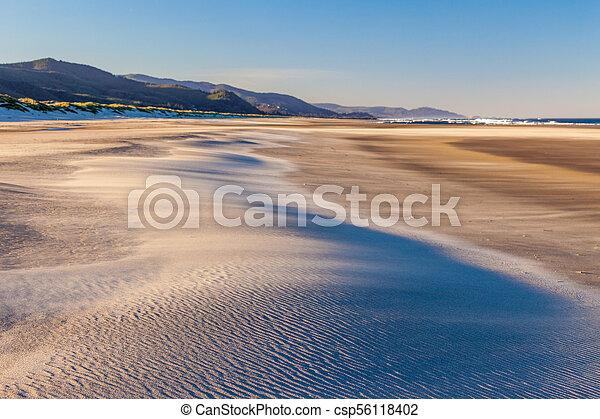autour de, soufflé, être, dune, plage sable, vent - csp56118402