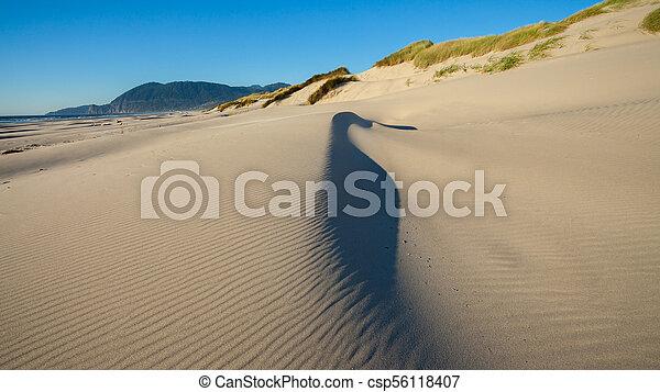 autour de, soufflé, être, dune, plage sable, vent - csp56118407