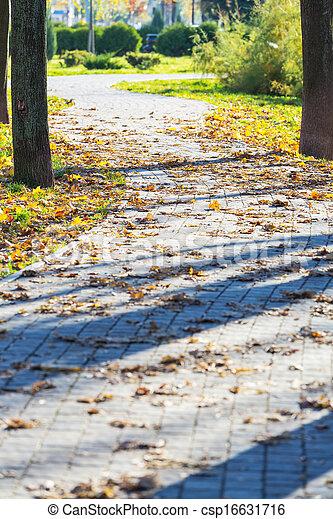 Autumn alley - csp16631716