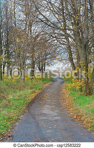 autumn alley - csp12583222
