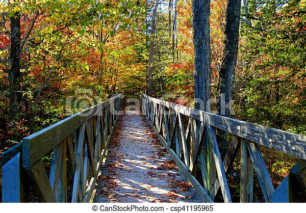 Autumn Arkansas and Amazing - csp41195965