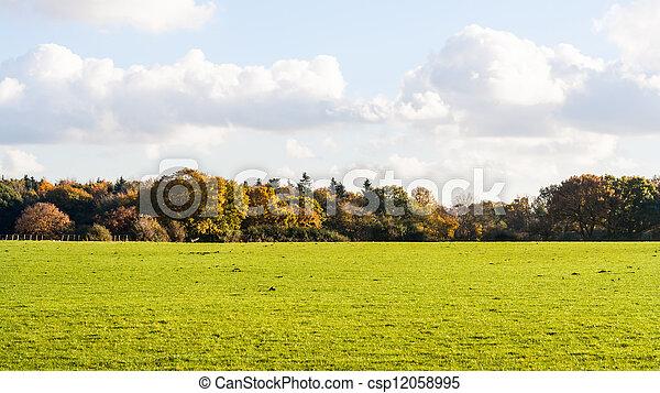 autumn backdrop - csp12058995