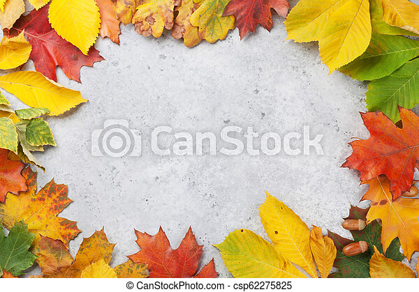 Autumn backdrop with colorful leaves - csp62275825