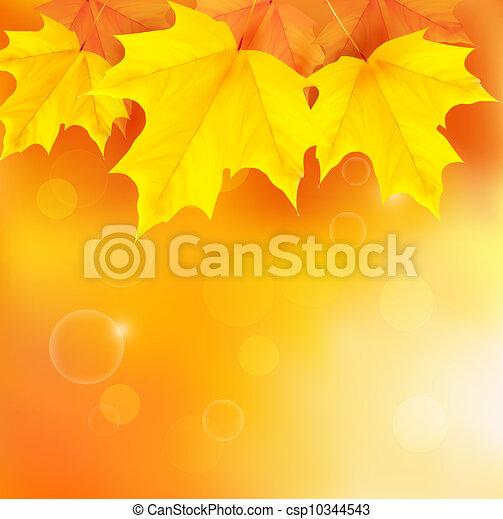Autumn background - csp10344543