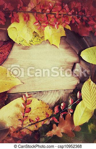 Autumn Background - csp10952368