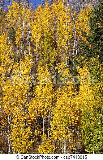 Autumn background - csp7418015