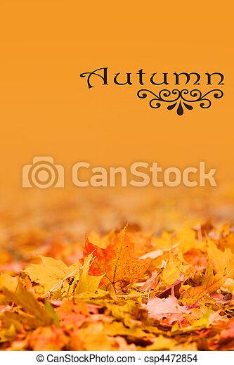 Autumn background - csp4472854
