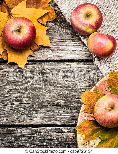 Autumn background - csp9726134