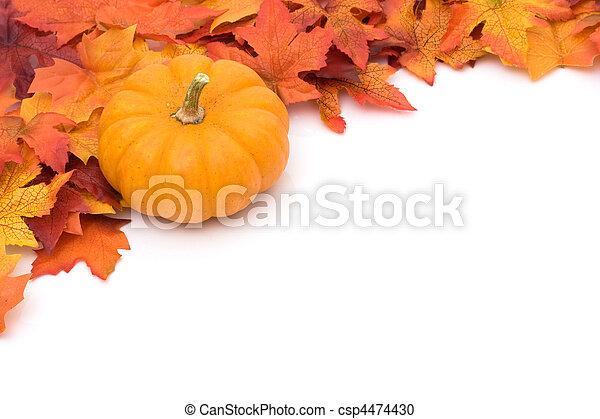 autumn background - csp4474430