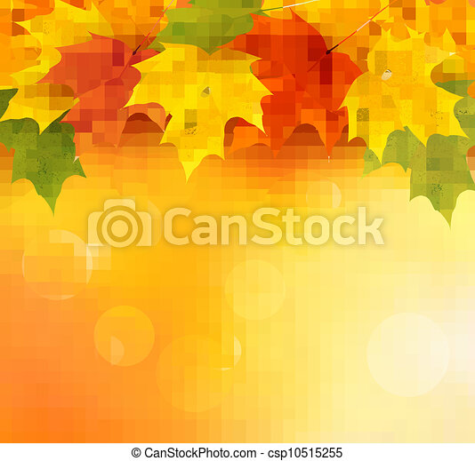 Autumn background with leaves   - csp10515255