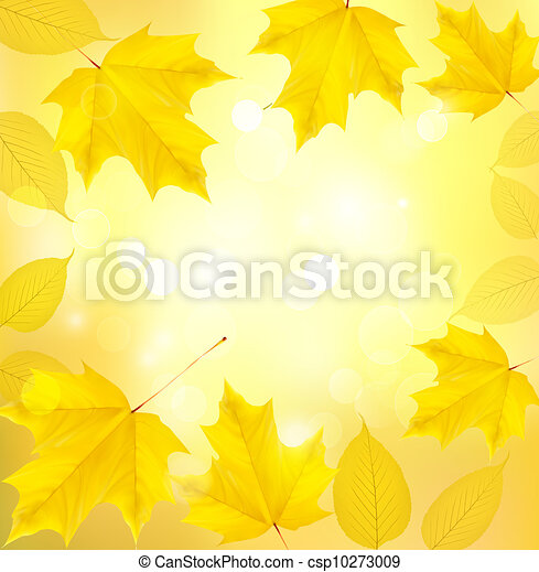 Autumn background with leaves  - csp10273009