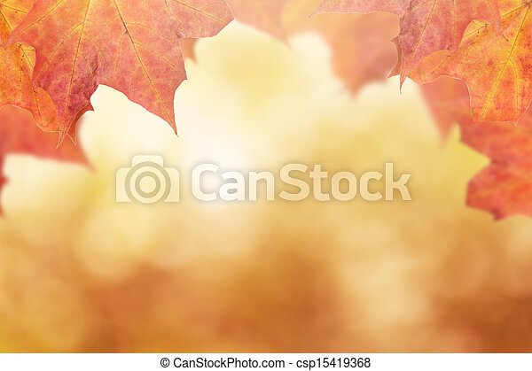 autumn background with maple leaves - csp15419368