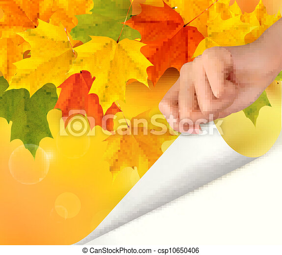 Autumn background with yellow leave - csp10650406