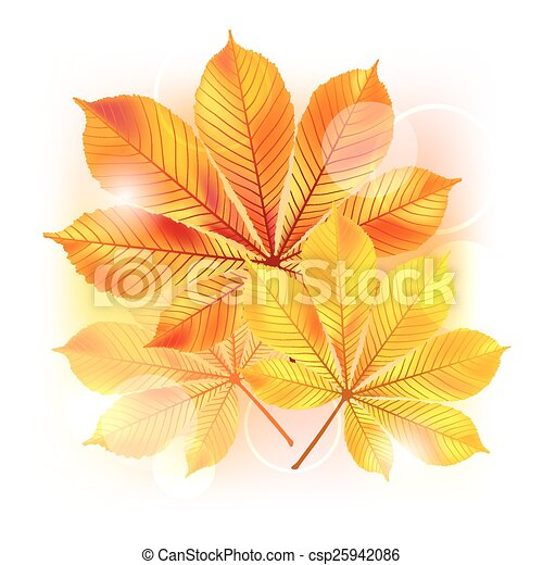 Autumn background with yellow leaves. - csp25942086