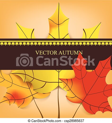 autumn background with yellow leaves - csp28985637