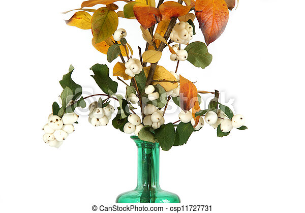 Autumn bouquet in a vase with colored glass on a white background - csp11727731