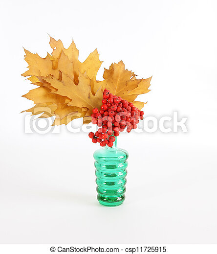 Autumn Bouquet with ash and oak leaves in a vase with colored glass on a white background - csp11725915