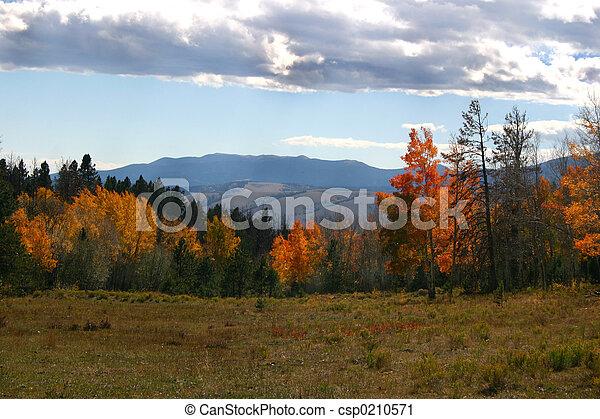 Autumn Clouds - csp0210571