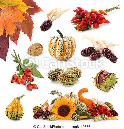 Autumn collection - csp6110586