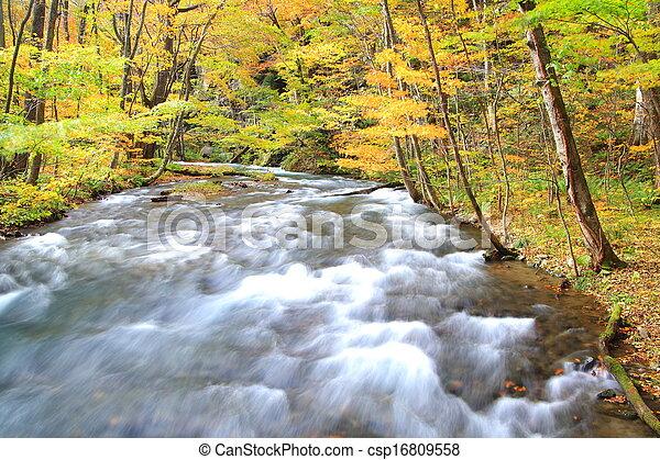 Autumn Colors of Oirase Stream - csp16809558