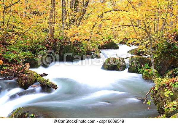 Autumn Colors of Oirase Stream - csp16809549