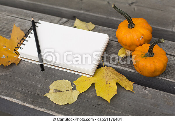 Autumn composition in the park with leaves notebook and pumpkin - csp51176484