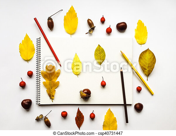 Autumn composition with album and pencils, decorated with yellow leaves, berries, chestnuts. Flat lay, top view - csp40731447