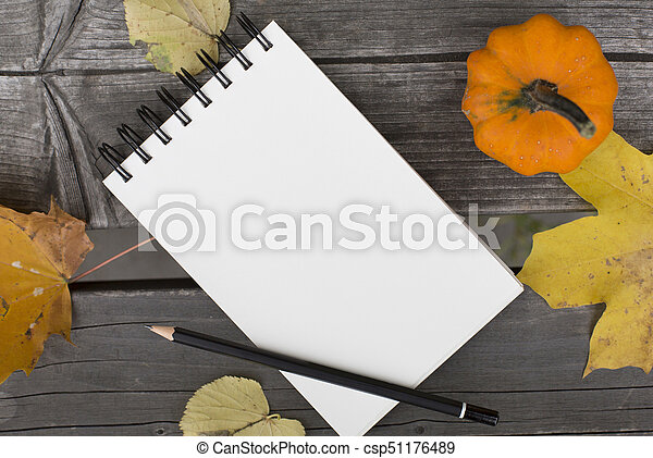 Autumn composition with blank notebook fallen leaves and pumpkin - csp51176489
