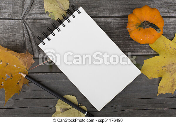 Autumn composition with blank notebook fallen leaves and pumpkin - csp51176490