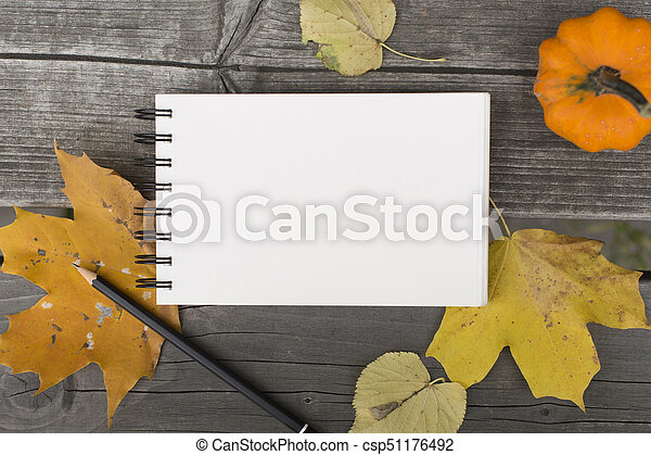 Autumn composition with blank notebook fallen leaves and pumpkin - csp51176492