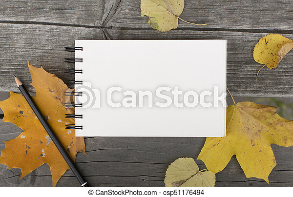 Autumn composition with blank notebook and fallen leaves - csp51176494