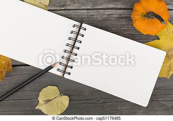 Autumn composition with blank open notebook - csp51176485