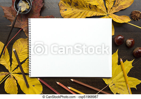 Autumn composition with empty album and fallen leaves - csp51968987